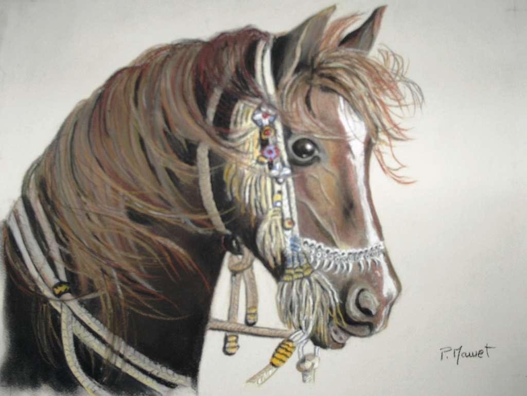 cheval arabe-